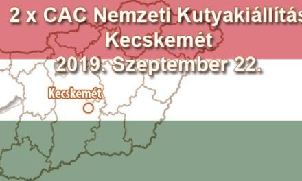 2 x CAC Nemzeti Kutyakiállítás – Kecskemét – 2019. Szeptember 22.