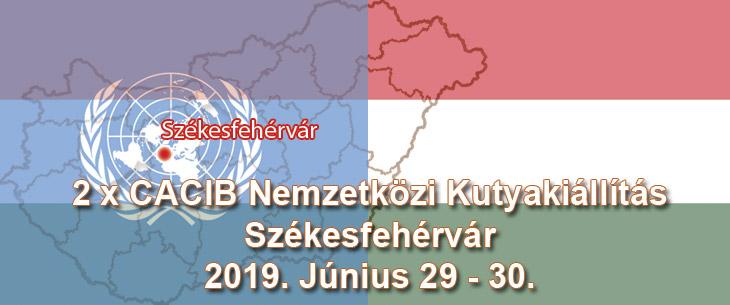 2 x CACIB Nemzetközi Kutyakiállítás – Székesfehérvár – 2019. Június 29 - 30.