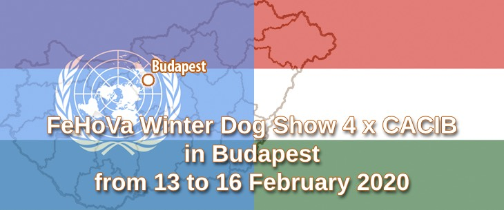 FeHoVa Winter Dog Show 4 x CACIB in Budapest from 13 to 16 February 2020