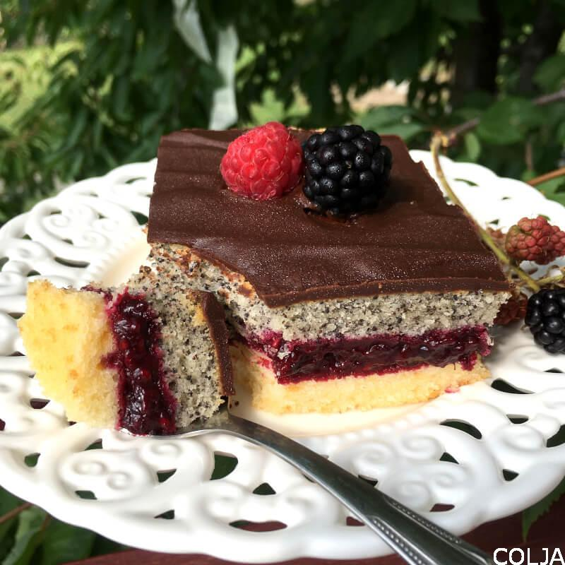 voćni kolač sa makom načet (1)
