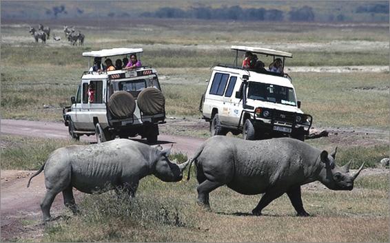 4 Day Tour to Tarangire, Ngorongoro Crater and Lake Manyara