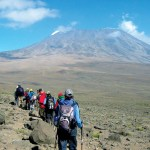 6 Day Kilimanjaro Trekking and Climbing, Rongai Route