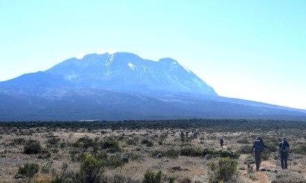 7 Day Kilimanjaro Climbing, Lemosho Route