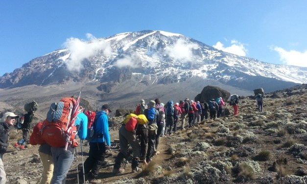 5 Days Climb  Kilimanjaro – Marangu Route