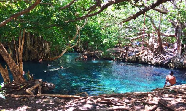 Hot Springs Kikuletwa (Chemka) Day Tour