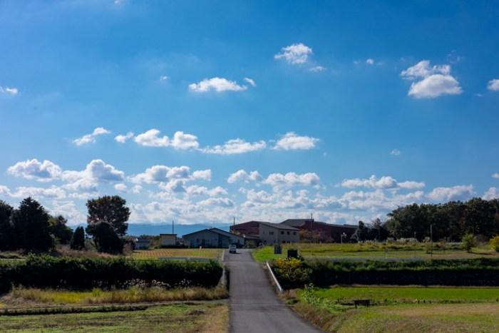 COEDO東松山遠くから