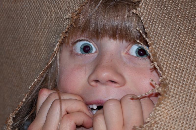 50 Jenis dan Pengertian Phobia Aneh Sekaligus Unik yang Dimiliki Manusia di Dunia Ini