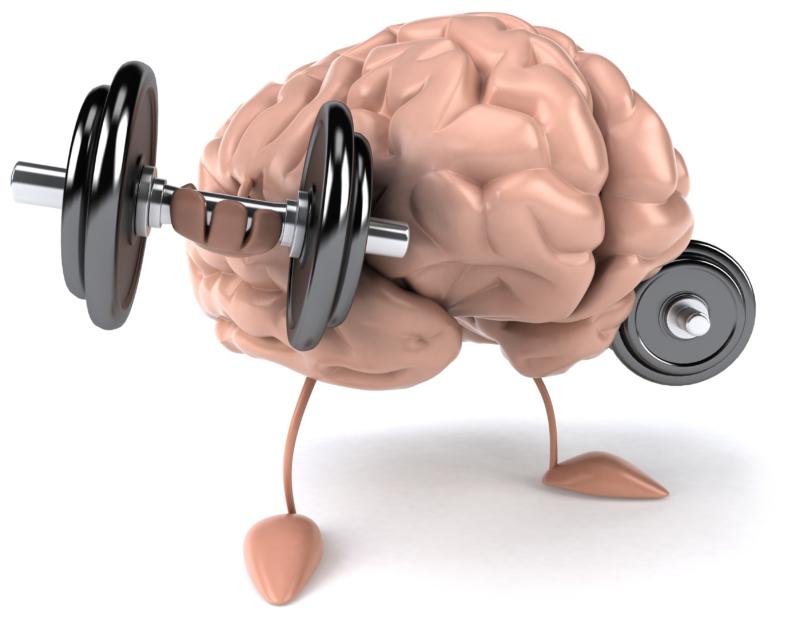 Maksimalkan Kinerja Otak dengan Brainking Plus