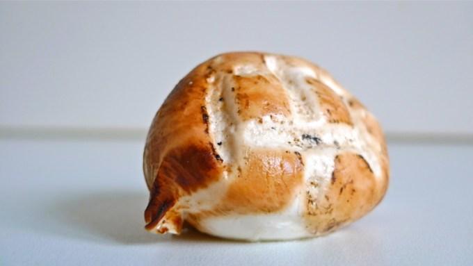 Jenis Keju Mozarella 3