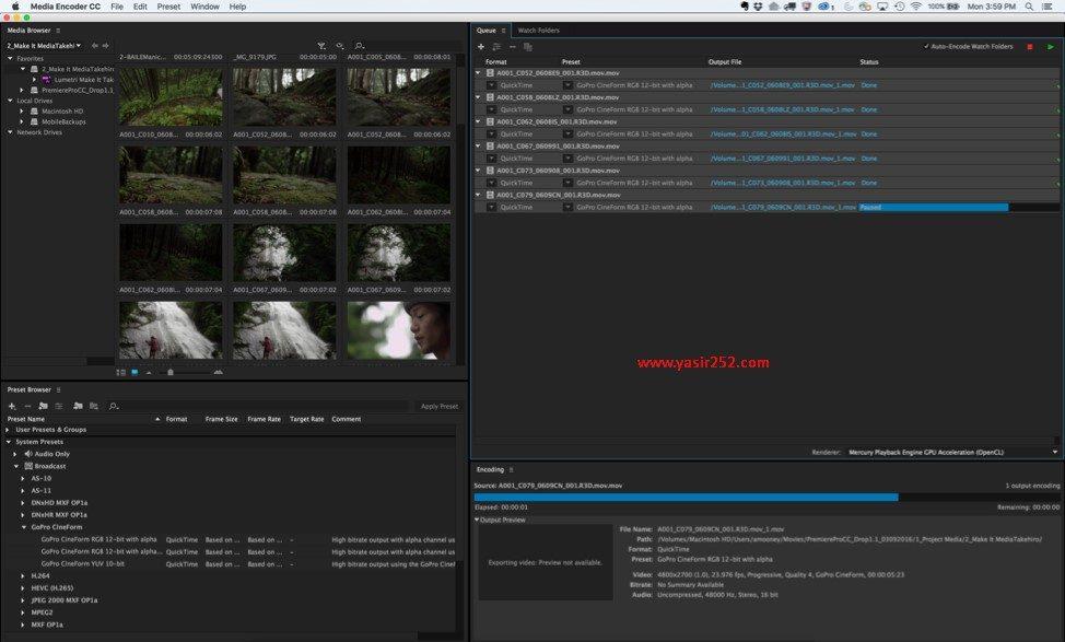 download-adobe-media-encoder-full-version-macosx-cc-2018-yasir252-9073548