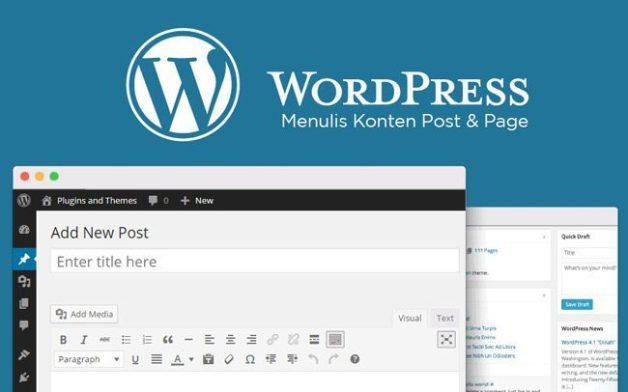 menulis-konten-post-page-wordpress-1879128-7594956