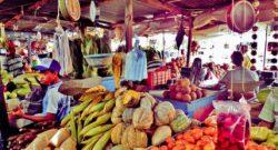 calendario económico completo latinoamericano. Mercado de frutas Barranquilla, Atlantico, Colombia