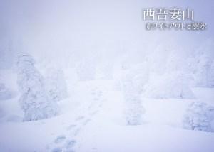 西吾妻山 ホワイトアウトと樹氷原 グランデコ~西大巓~西吾妻山山頂