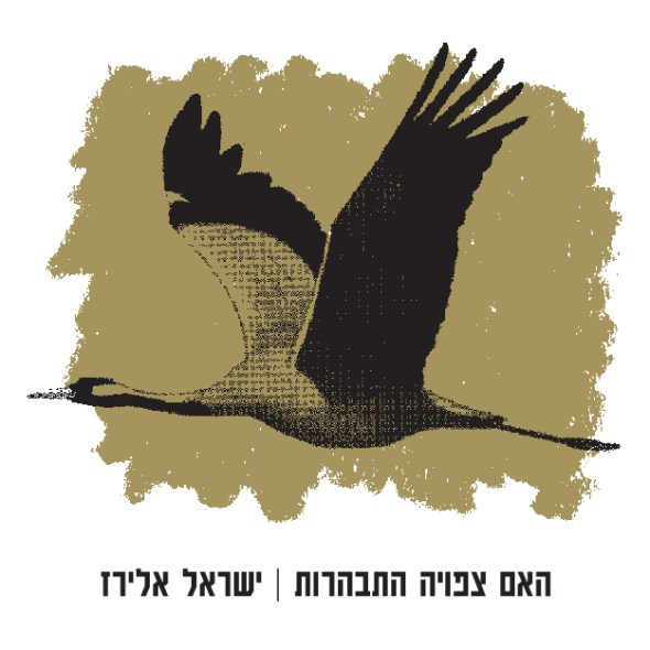 האם צפויה התבהרות / ישראל אלירז