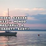 Idegen szavak kvíz - mondd magyarul a megadott szót!