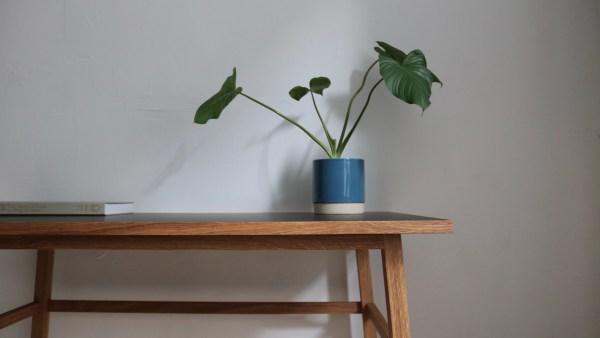skrivebord linoleum egetræ