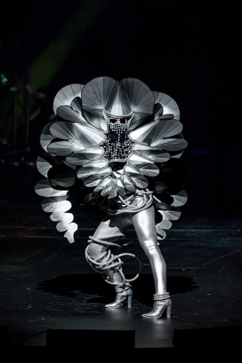 World of WearableArt 2017_Daisy by Annie Temmink_USA_02