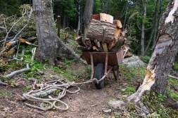 Przewóz drewna zaczyna się... w lesie ;)