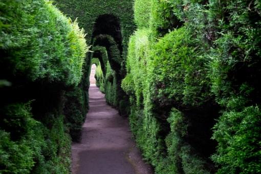 Zielone korytarze na cmentarzu w Tulcán