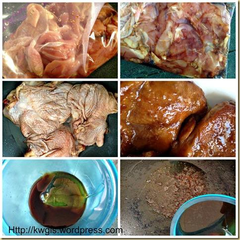Teriyaki Chicken (照り焼きチキン,日式照烧鸡肉)