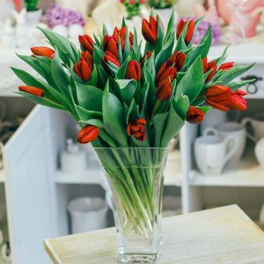 bukiet tulipanów czerwony