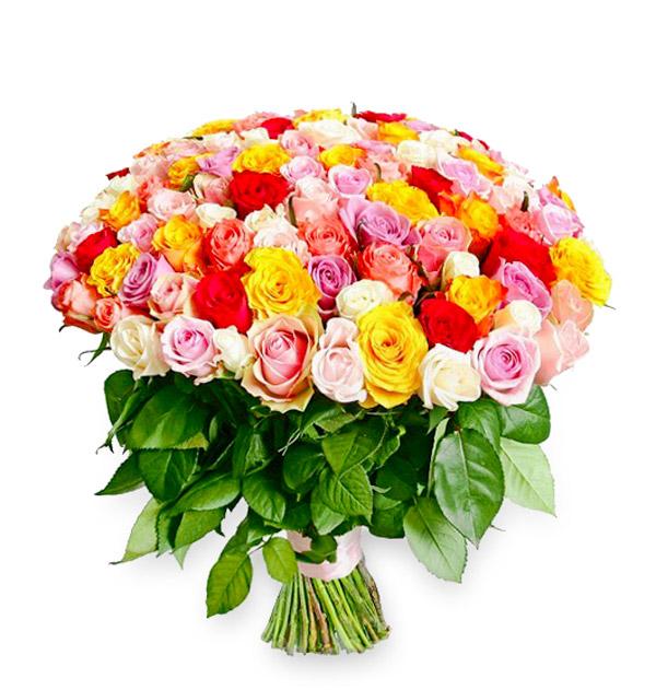 bukiet 150 kolorowych róż
