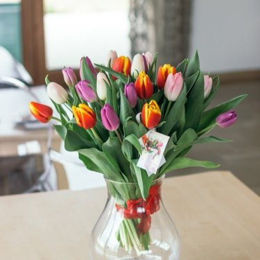 bukiet kolorowych tulipanow