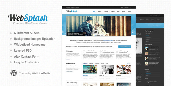 websplash 35 Impressive WordPress Themes of April 2012