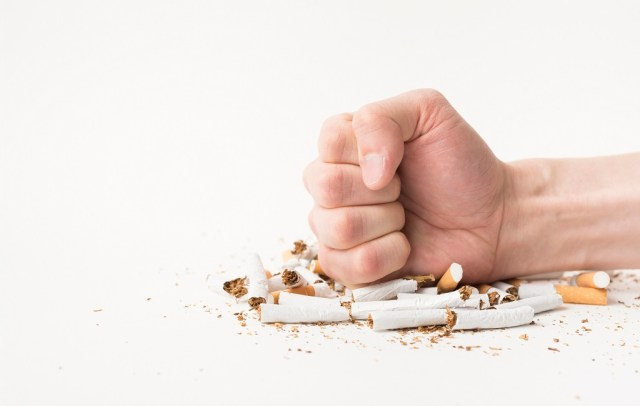Say NO to Tobacco – It's Killing Your Brain, Literally.