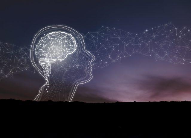 Does Mindfulness Meditation Change Your Brain?