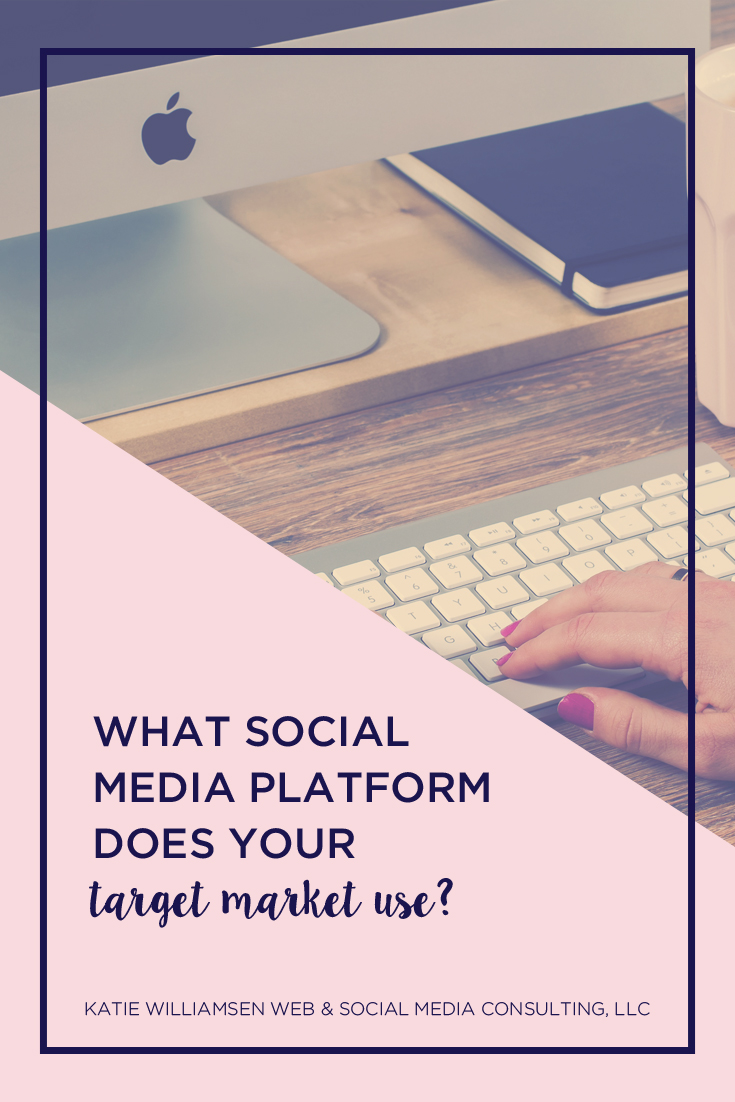 What Social Media Platform Does Your Target Market Use? // Katie Williamsen Web & Social Media, LLC