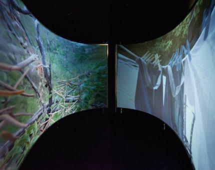 Sharelly Emanuelson, Siudadanos, 2015, installation view