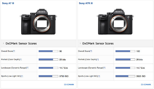 https://www.dxomark.com/Cameras/Compare/Side-by-side/Sony-A7-III-versus-Sony-A7R-III___1236_1187