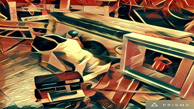 What The F*ck Is Prisma and Why It Is Taking Over The World