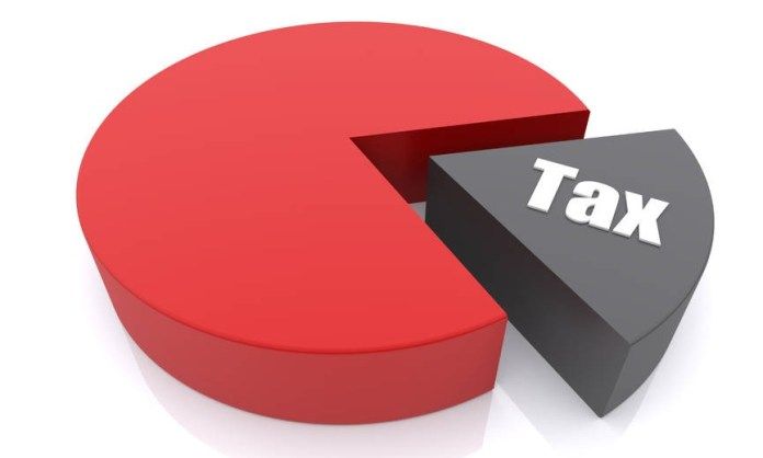 Voting on proposal to tax expat remittance