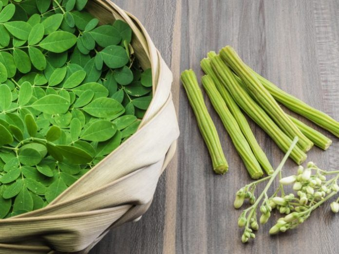 6 Amazing benefits of Moringa that are Science-based