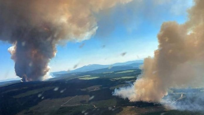 Canada : Lightning strikes triggered by heatwave could fuel forest fires in Western Canada