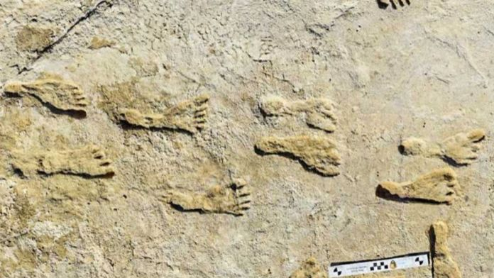 Human footprints of around 23,000 years old found in New Mexico
