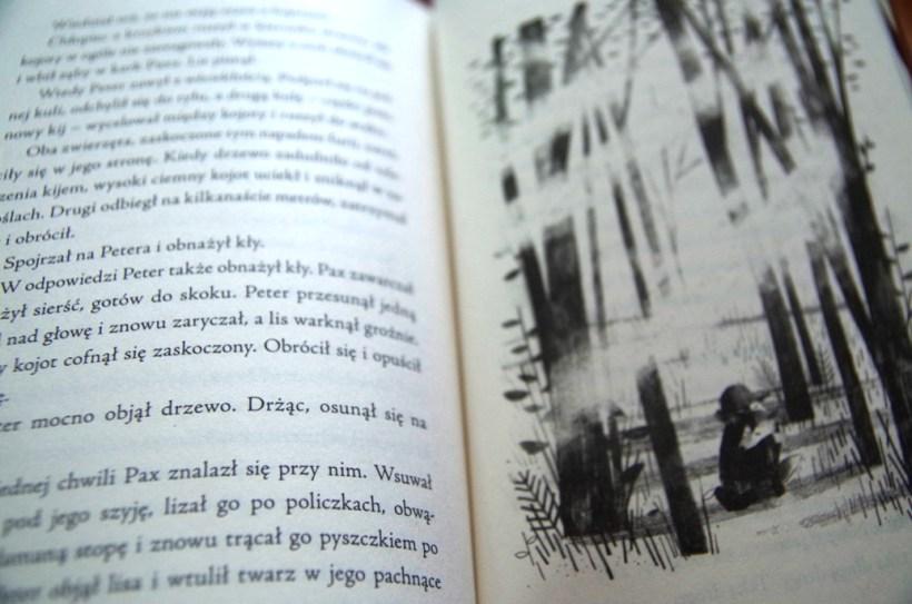 Pax - Sara Pennypacker - ilustracje