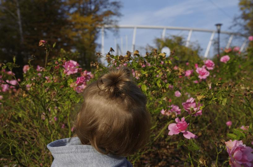 półdziecięce mądrości - stadion śląski w tle