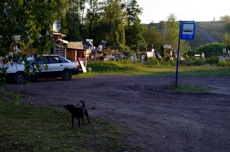 Alpy Wełnowieckie - przystanek i pies