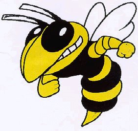 fulton hornets logo