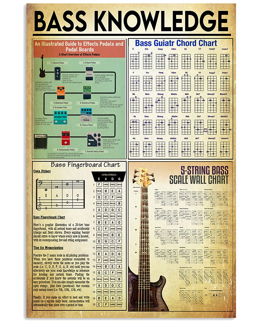 bass guitar knowledge poster