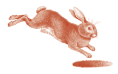 RH Rabbit Illustration HighRes Color 2 01 1 e1549419830158 - Rabbit Hole