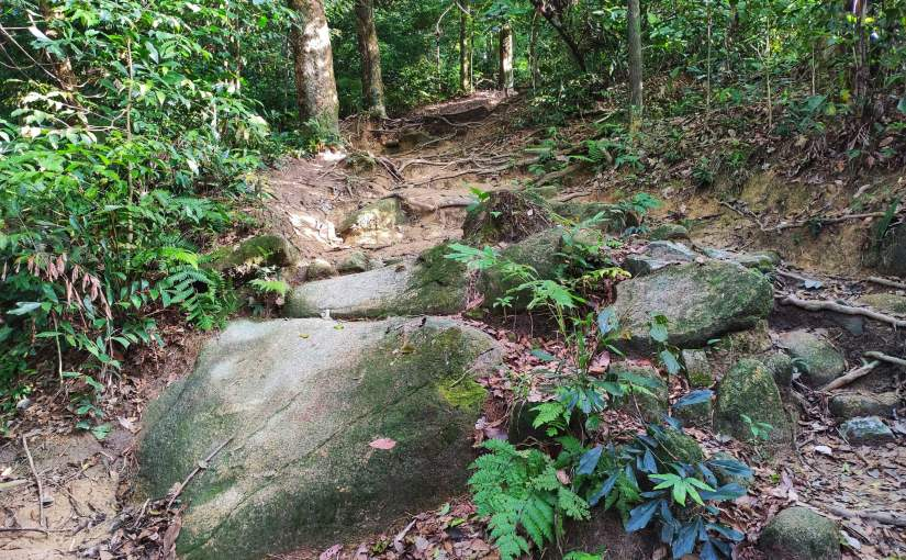 Hiking at Bukit Kiara, TTDI – Dec 2019