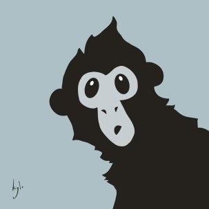 Spider Monkey: Peekaboo!