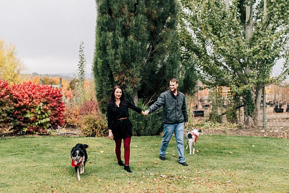 Dog Parents | the Dalton Family