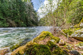 Vedder River just south of Chilliwack Lake