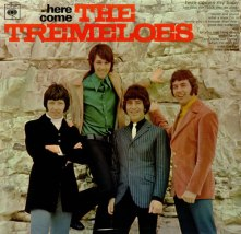 the_tremeloes_here2bcome2bthe2btremeloes-452870