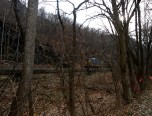 The trains are plentiful along the C&O canal.